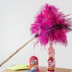 A feather duster and polish