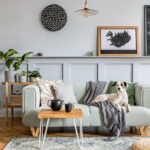How to clean the air in your home | an open living room with house plants and a mirror | shark vacuum shark air purifier